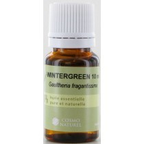 Gaultherie Wintergreen