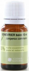 Genevrier/ Jeneverbes (Juniperus Communis)